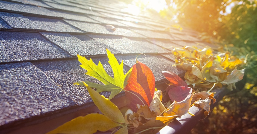 splurge or save? 9 Essential Benefits of Gutter Cleaning That You Need to Know About