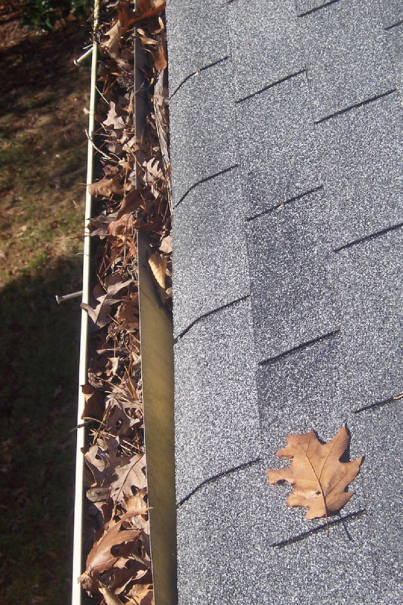 Gutter Amp Roof Damage Photo Gallery Ned Stevens