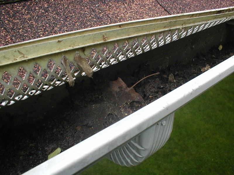 What S In Your Gutters Photo Gallery Ned Stevens