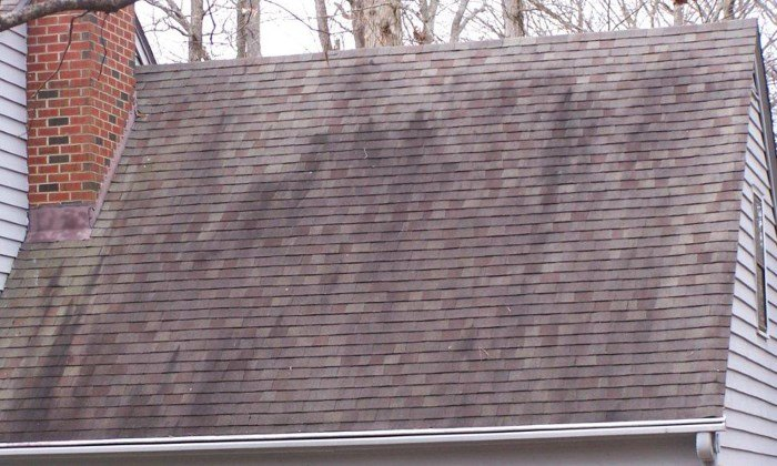 Roof Stains