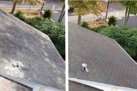 Roof Washing Before and After