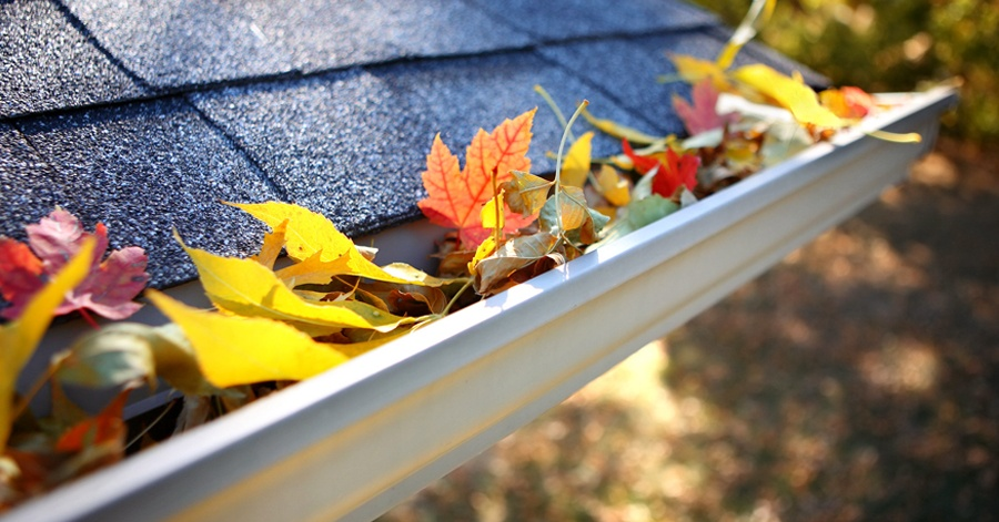5 Little-Known Secret Benefits of Gutter Cleaning